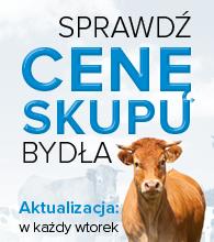 Ceny_skupu_bydla