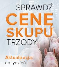 Ceny_skupu_trzody